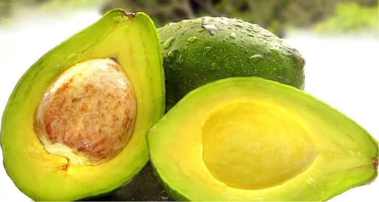 Weight Loss Tips - The Avocado